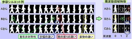 (図2)個人による歩容シルエットの違い
