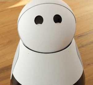 (写真1)Mayfield Robotics開発したコンパニオンロボットKuri