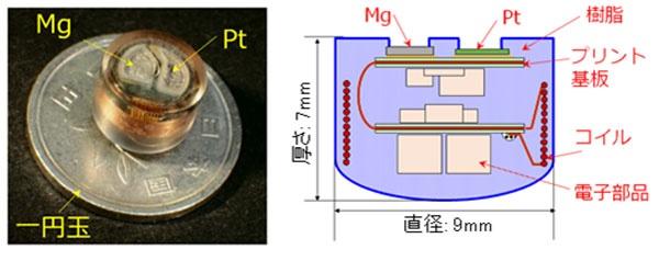 (図2)東北大学が開発した胃酸電池を内蔵した「飲む体温計」(東北大学のプレスリリースより引用)