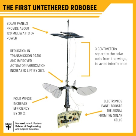 (写真2)ハーバード大学が開発した太陽電池で飛行する「RoboBee X-wing」(ハーバード大学のホームページより引用)