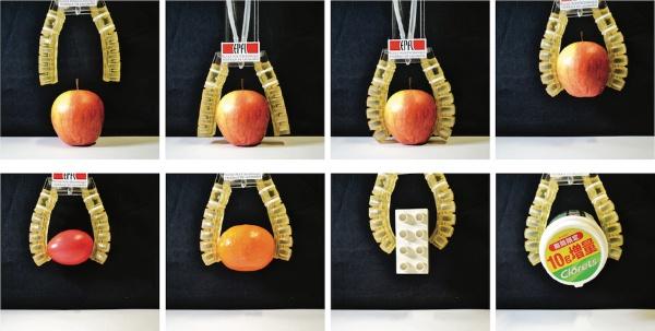 (写真2)スイス連邦工科大学が開発した可食ロボットはリンゴ(95.6g)、ゆで卵(47.7g)、オレンジ(104.8g)、レゴレン(25.7g)、ボトルなど、異なるサイズや形状の物体が掴める(IEEEのWebサイトより引用)