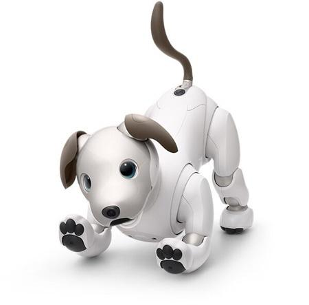 (写真1)2018年から発売されている「アイボ」はより犬の姿に近くなった(ソニーのプレスリリースより引用)