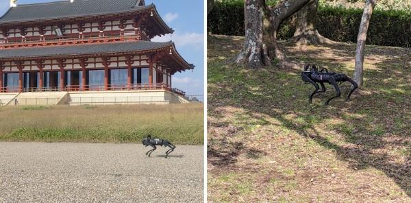 (写真4)「平城宮跡歴史公園スマートチャレンジ」でNTTコムウェアが活用する四足歩行ロボット(写真提供:NTTコムウェア)