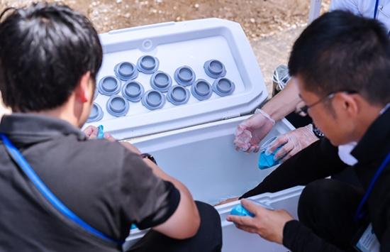 観客に配布する氷のうに氷を詰めるスタッフ。期間中に400個配布した