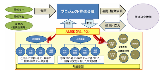 (図1)文科省が示した老化研究の実施体制(構想案)