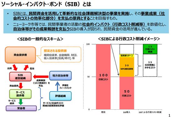 SIBの概要(出所:経済産業省)