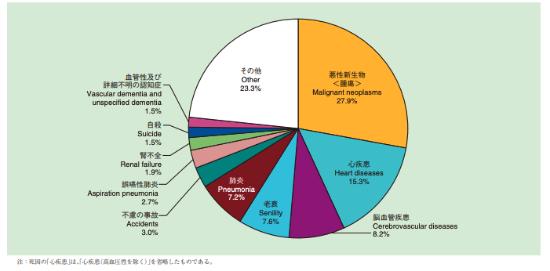 誤嚥性肺炎は2017年における主な死因の2.7%を占める(出所:「平成29年度 人口動態統計(厚生労働省)」)