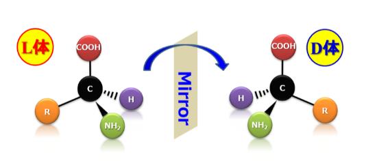 キラルアミノ酸のイメージ(提供:花王)