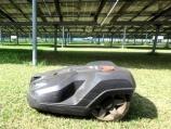 自律走行型ロボット除草機を使いこなす、広島・竹原の太陽光発電所