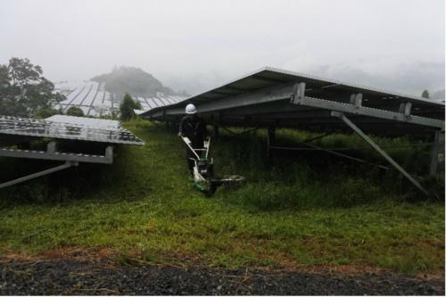 図7●自走式の除草機でアレイの下を除草。写真は「美作武蔵メガソーラー発電所」。同発電所は1本脚架台のため、機械除草の効率が高い
