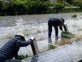 「縁石」に固定した配水池上のメガソーラー、その利点と課題