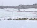 サイト内に農業用ため池、町と水利組合と連携して管理、宮城・松島のメガソーラー
