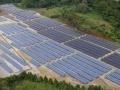 「草刈りの工夫でイノシシが減る」、「夏は化合物型が強い」、上野原のメガソーラーの8年