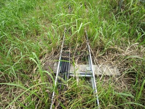 図1●フタを使わず電線が露出し、雑草に埋もれている