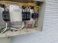 住宅太陽光の接続箱に5羽の「スズメ」、侵入経路は?