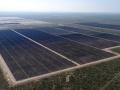 石油産業を支えた米テキサス州、風力に続き太陽光でも全米トップに