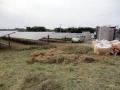太陽光発電所における刈草の「適法な処分」は?