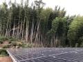 低圧太陽光を購入して検証、実際の利回りは?