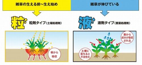 図2●粒状と液状の違いと特徴