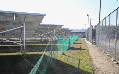 図2●中央に見えるネット付きの柵から右が倉庫への通路