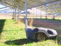 「ルンバ」のような自律走行型ロボットが草刈り、姫路の低圧太陽光