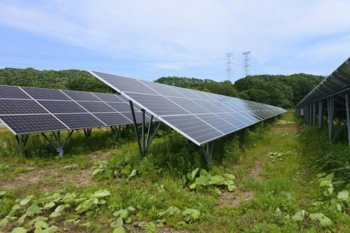 図6●「ソフトバンク苫東安平ソーラーパーク2」に設置された太陽光パネル