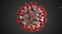 新型コロナウイルスの解析プロジェクトに再エネ電気を供給
