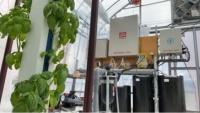 IoT活用による水耕栽培の自動化制御システム