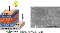 イオン液体を添加したペロブスカイト太陽電池の構造とトリプルカチオン型ペロブスカイト膜の表面電子顕微鏡写真