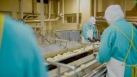 カルビー工場の生産ライン