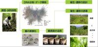 「生態系リデザイン」サービス提供フロー