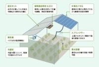 ソーラーシェアリングの概要
