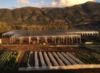 翔栄クリエイトが静岡県函南町に施工した片野牧場のアグリソーラー