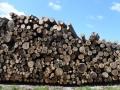 甲斐市で7MWの木質バイオマス発電、未利用材などで