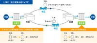 MCHによる水素サプライチェーン