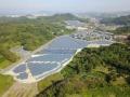 SMFLみらいと自然電力、合計12MWの稼働済み太陽光を共同で取得