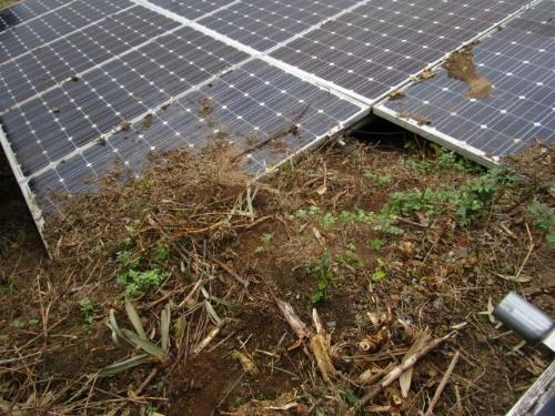 図1●土に埋まった太陽光パネル