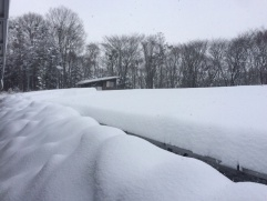 図1●はんぺんのように分厚く雪が積もる