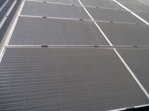 図1●灰で全面が汚れていた屋根上の太陽光パネル