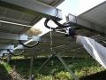 「またぎ配線」の保護管が、雨水の溜まりどころに
