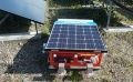 Robot Steps on Weeds to Suppress Their Growth at Solar Plants (1)