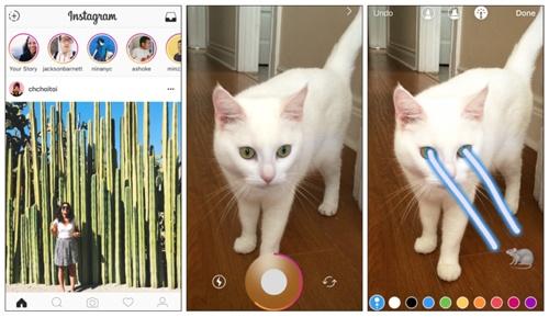 Instagramの画面の上部に並ぶ「ストーリーズ」。気軽に投稿し、気軽に見る動画が若者の心をつかんでいる