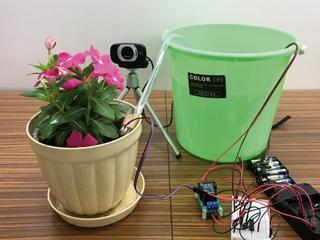 園芸を支援する組み込み機器、水やりを自動化し成長記録も保存