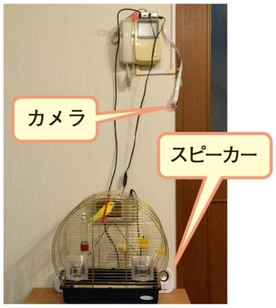 図1 鳥かごの監視システム