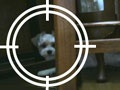 第5回 ロボットの目をWebカメラで実現(1)