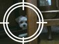 第5回 ロボットの目をWebカメラで実現(2)